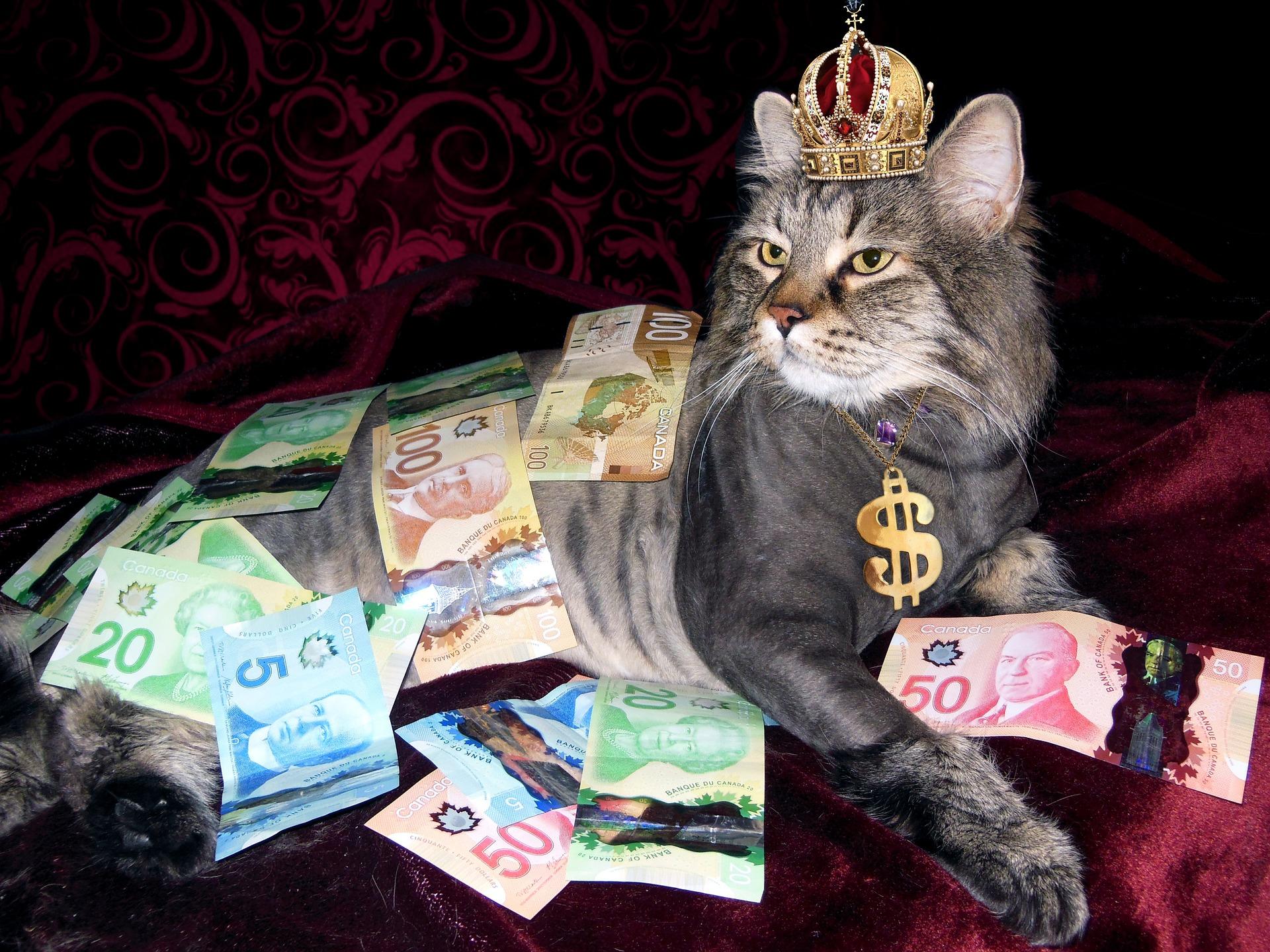 l'argent n'a pas d'odeur
